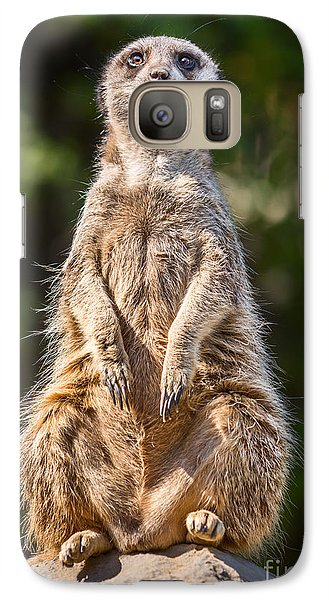 Morning Sun Galaxy S7 Case by Jamie Pham
