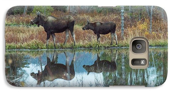 Galaxy Case featuring the photograph Mother And Baby Moose Reflection by Rebecca Margraf