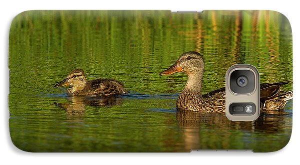 Galaxy Case featuring the photograph Mother And Child Mallards by Jean Noren