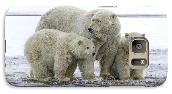 Mother And Cubs In The Arctic Galaxy S7 Case