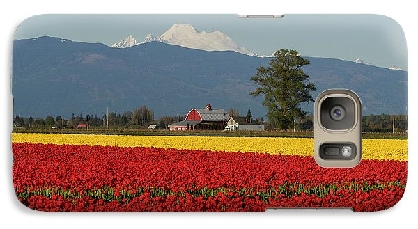 Mount Baker Skagit Valley Tulip Festival Barn Galaxy Case by Mike Reid