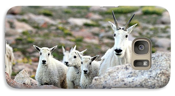 Galaxy Case featuring the photograph Mountain Goat Family Panorama by Scott Mahon