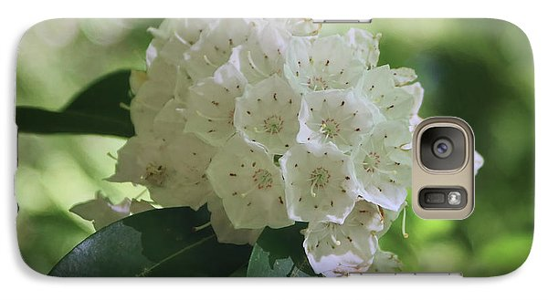 Galaxy Case featuring the photograph Mountain Laurel - Spring by Nikolyn McDonald