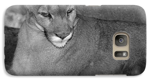 Galaxy Case featuring the photograph Mountain Lion - Sonoran Desert Museum  by Donna Greene