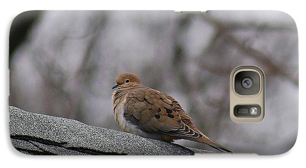 Galaxy Case featuring the photograph Mourning Dove 20120318_1a by Tina Hopkins