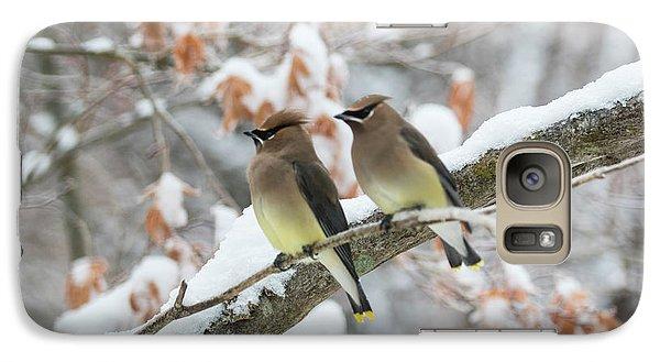 Cedar Waxing Galaxy S7 Case - Mr. And Mrs. Cedar Wax Wing by Betty Pauwels