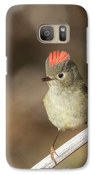Galaxy Case featuring the photograph Mr Kinglet  by Mircea Costina Photography