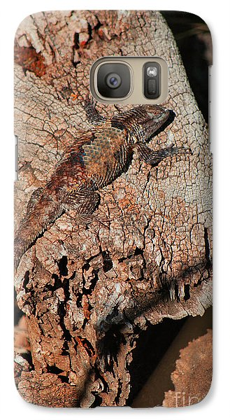 Galaxy Case featuring the photograph Mr. Lizard - Tucson Arizona by Donna Greene
