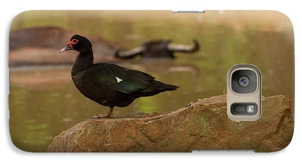 Muscovy Duck Galaxy S7 Case