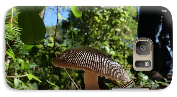 Galaxy Case featuring the photograph Mushroom by Matthew Bamberg