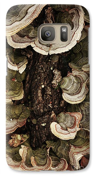 Galaxy Case featuring the photograph Mushroom Shells By The Lake Shore by Kim Henderson