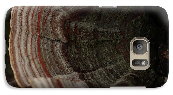 Galaxy Case featuring the photograph Mushroom Shells by Kim Henderson