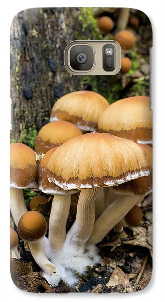 Galaxy Case featuring the photograph Mushrooms - D009959 by Daniel Dempster