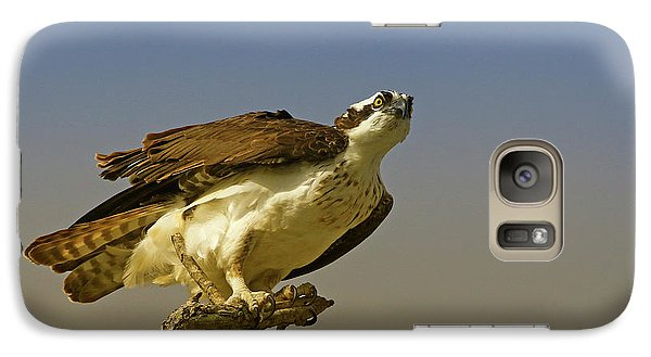 Galaxy Case featuring the photograph My Pose For You by Deborah Benoit