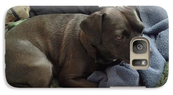 Galaxy Case featuring the photograph My Puppy Bella by Jewel Hengen