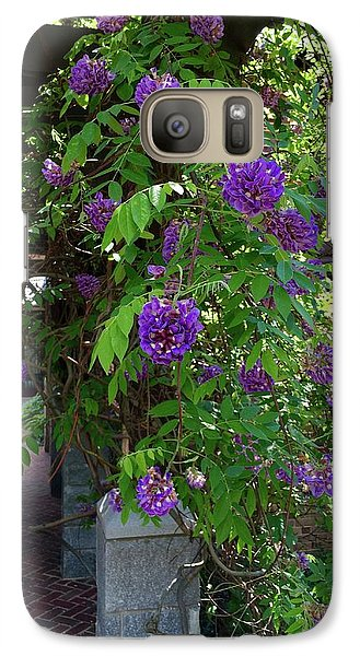 Galaxy Case featuring the painting Native Wisteria Vine I by Angela Annas