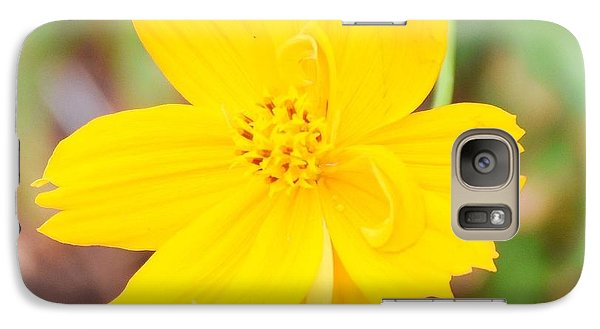 Galaxy Case featuring the photograph Nature Colorful Flower Gifts - Yellow by Ray Shrewsberry