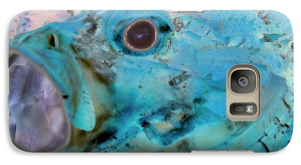 Galaxy Case featuring the photograph Nautical Beach And Fish #1 by Debra and Dave Vanderlaan