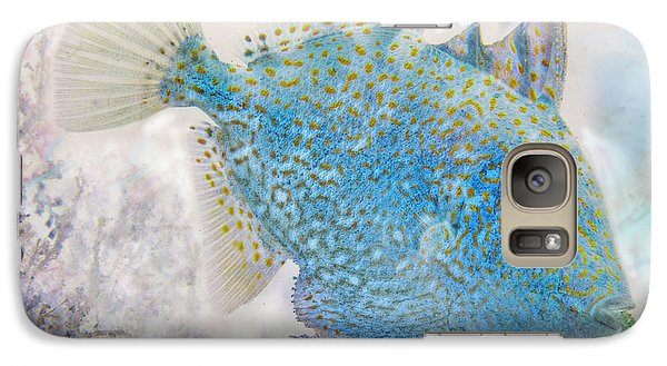 Galaxy Case featuring the photograph Nautical Beach And Fish #2 by Debra and Dave Vanderlaan