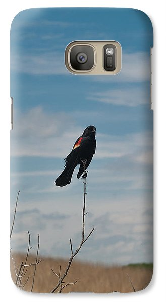 Galaxy Case featuring the photograph Nebraska Red-winged Black Bird by Joshua House