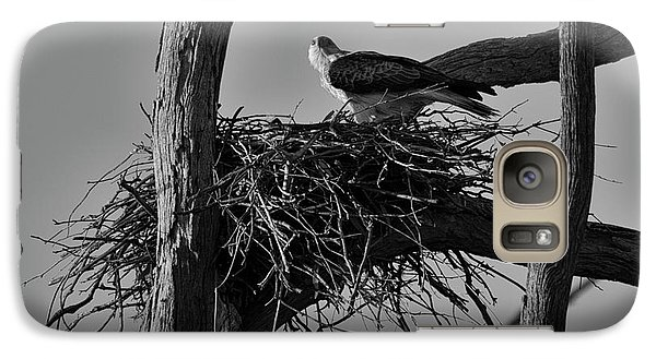 Galaxy Case featuring the photograph Nesting V2 by Douglas Barnard