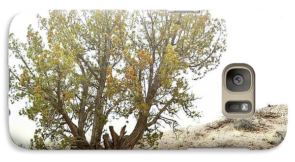 Galaxy Case featuring the photograph New Mexico Desert Southwest Tree by Andrea Hazel Ihlefeld