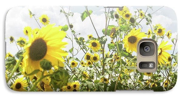 Galaxy Case featuring the photograph New Mexico Sunflowers by Andrea Hazel Ihlefeld