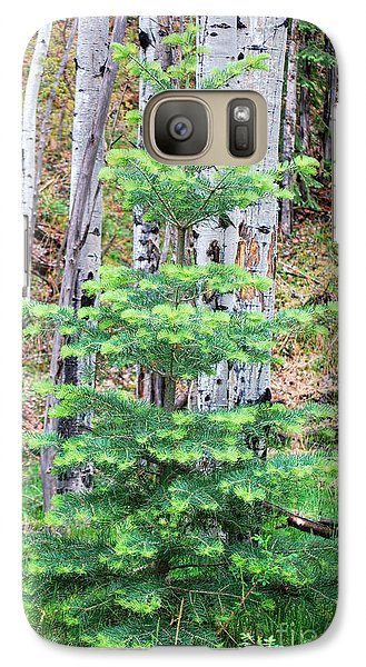 Galaxy Case featuring the photograph Next Years Christmas Tree by Donna Greene