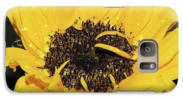 Galaxy Case featuring the photograph Nice Sunflower by Elvira Ladocki