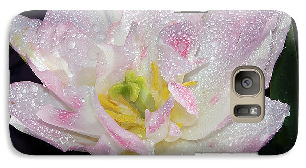 Galaxy Case featuring the photograph Nice Tulip by Elvira Ladocki