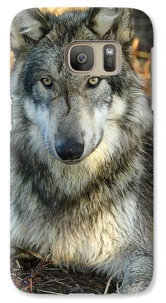 Galaxy Case featuring the photograph Noble Lupine by Shari Jardina