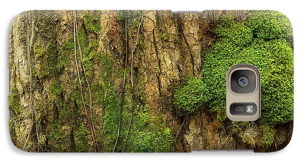 Galaxy Case featuring the photograph North Side Of The Tree by Mike Eingle