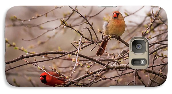 Galaxy Case featuring the photograph Northern Cardinal Pair In Spring by Terry DeLuco