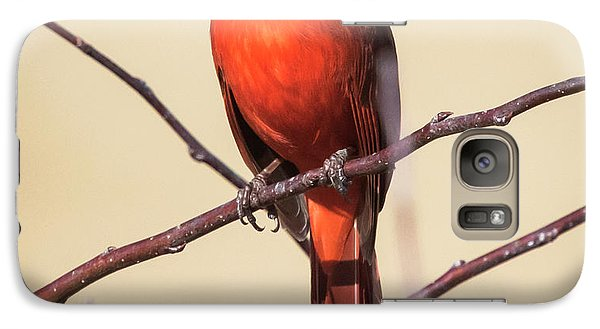 Northern Cardinal Profile Galaxy S7 Case by Ricky L Jones
