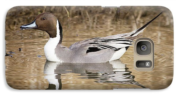 Northern Pintail Drake Galaxy S7 Case