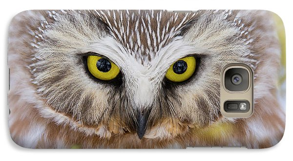 Galaxy Case featuring the photograph Northern Saw-whet Owl Portrait by Mircea Costina Photography