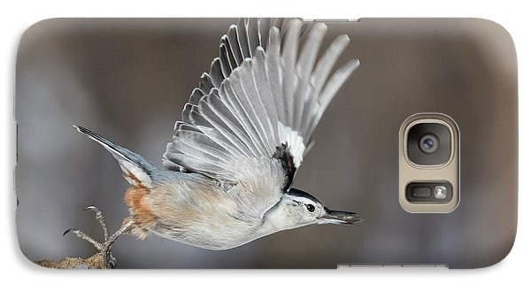 Galaxy Case featuring the photograph Nuthatch In Action by Mircea Costina Photography