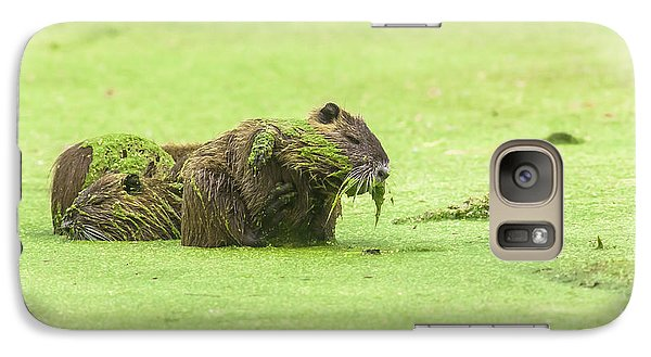 Galaxy Case featuring the photograph Nutria In A Pesto Sauce by Robert Frederick