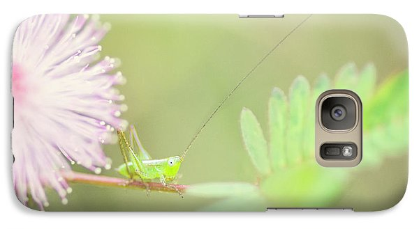 Galaxy Case featuring the photograph Nymph by Heather Applegate