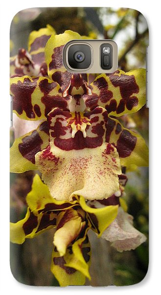 Galaxy Case featuring the photograph Odontoglossum Orchid by Alfred Ng
