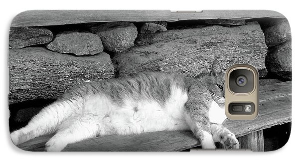 Galaxy Case featuring the photograph Old Mill Cat by Sandi OReilly
