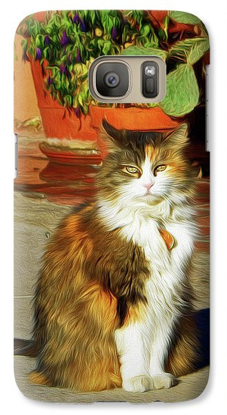 Galaxy Case featuring the photograph Old Town Cat by Nikolyn McDonald