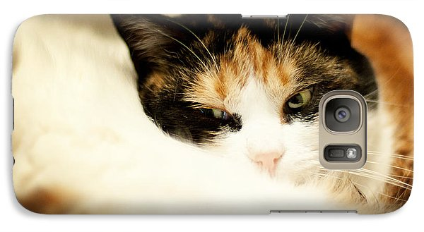 Galaxy Case featuring the photograph On A Furry Pillow by Laura Melis