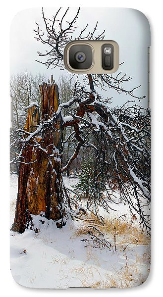 Galaxy Case featuring the photograph One Branch Left by Shane Bechler