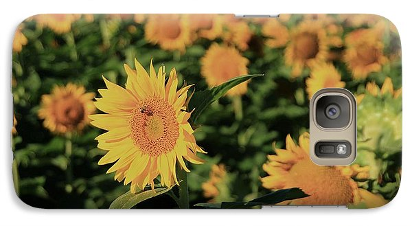 Galaxy Case featuring the photograph One In A Million Sunflowers by Chris Berry