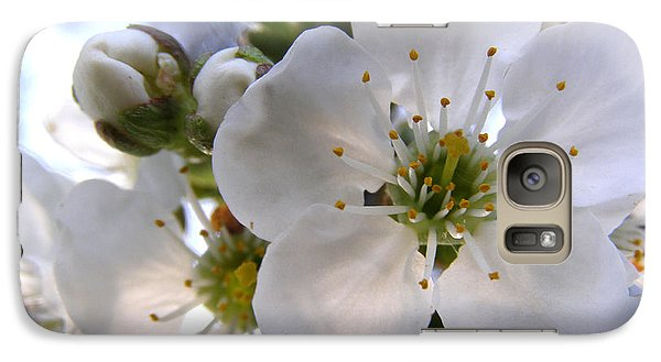 Galaxy Case featuring the photograph Opening Act -  Cherry Blossoms by Angie Rea
