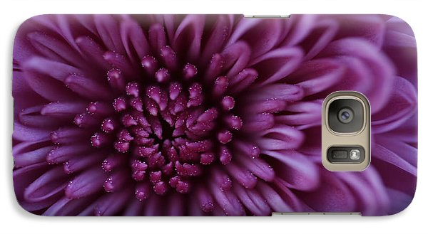 Galaxy Case featuring the photograph Purple Mum by Glenn Gordon