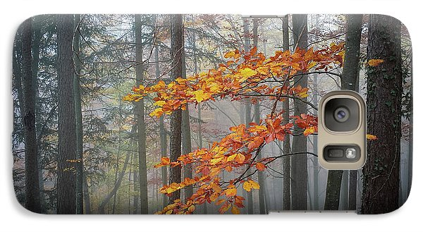Galaxy Case featuring the photograph Orange And Grey by Elena Elisseeva