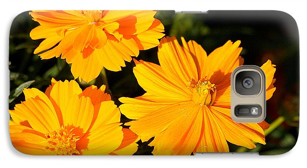 Galaxy Case featuring the photograph Cosmos Trio by Sheila Brown