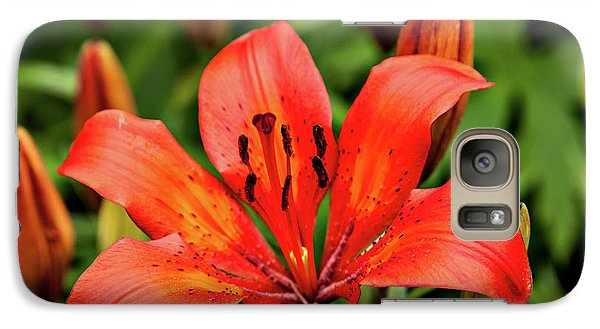 Galaxy Case featuring the photograph Orange Day Lilly Single by Mary Jo Allen